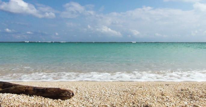 晴れた日の沖縄の海
