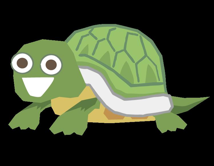 i000581_Turtle