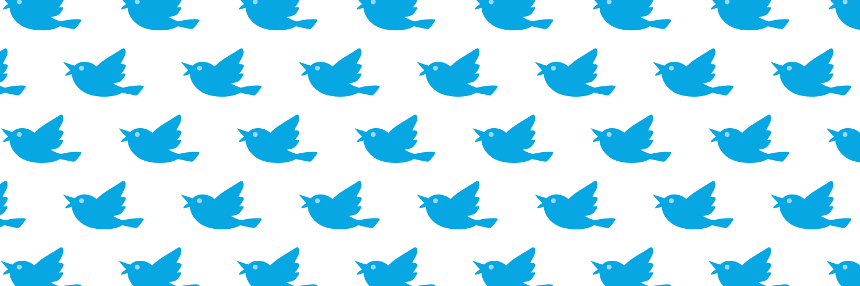 i000689_blue_bird